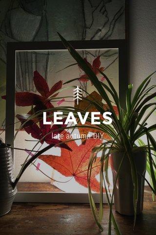 LEAVES late autumn DIY