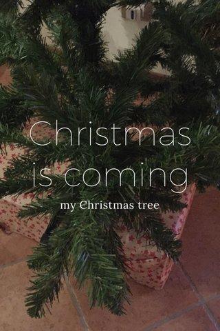 Christmas is coming my Christmas tree