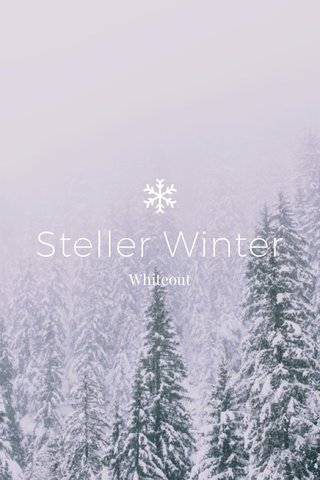 Steller Winter Whiteout