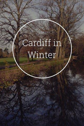 Cardiff in Winter