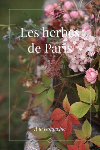 Les herbes de Paris À la campagne