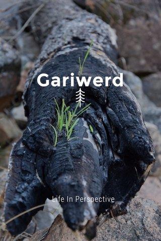 Gariwerd Life In Perspective