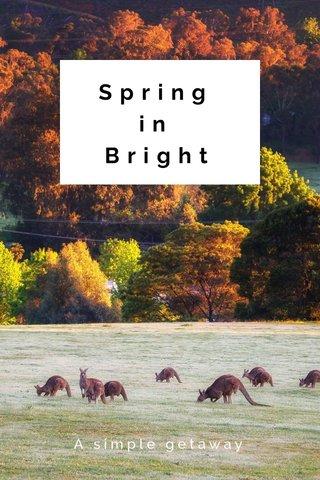 Spring in Bright A simple getaway