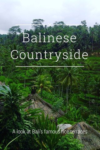 Balinese Countryside A look at Bali's famous rice terraces