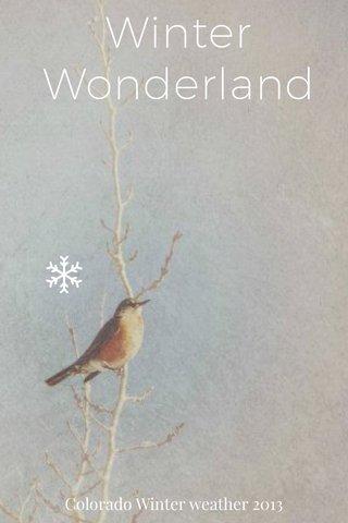 Winter Wonderland Colorado Winter weather 2013