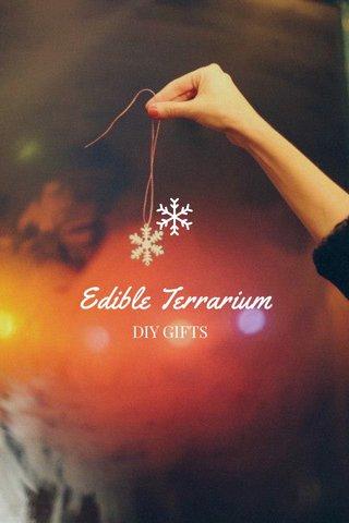 Edible Terrarium DIY GIFTS