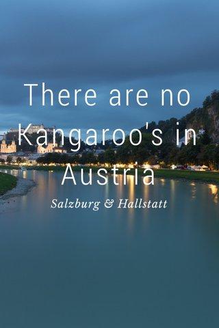 There are no Kangaroo's in Austria Salzburg & Hallstatt