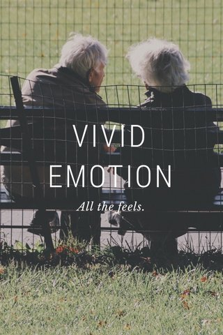 VIVID EMOTION All the feels.