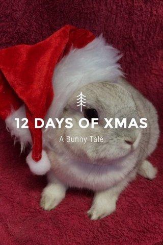 12 DAYS OF XMAS A Bunny Tale