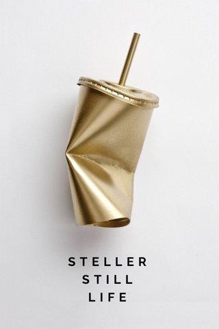 STELLER STILL LIFE