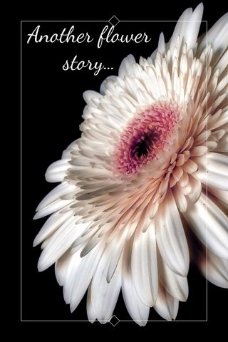 Another flower story...