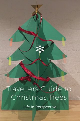 Travellers Guide to Christmas Trees Life In Perspective