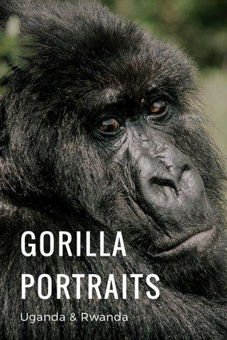 GORILLA PORTRAITS Uganda & Rwanda
