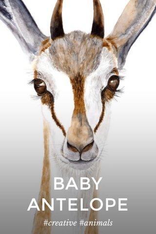 BABY ANTELOPE #creative #animals
