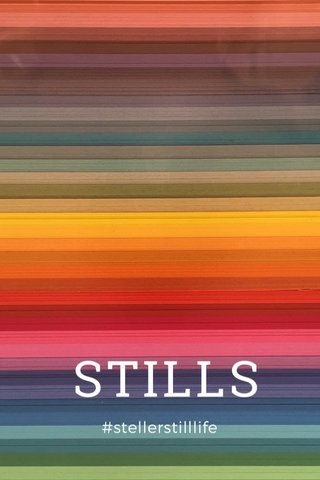 STILLS #stellerstilllife