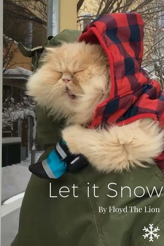Let it Snow By Floyd The Lion