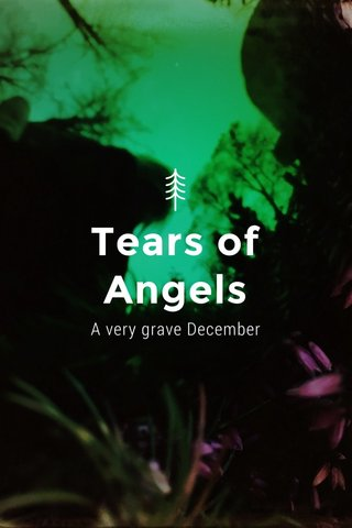 Tears of Angels A very grave December