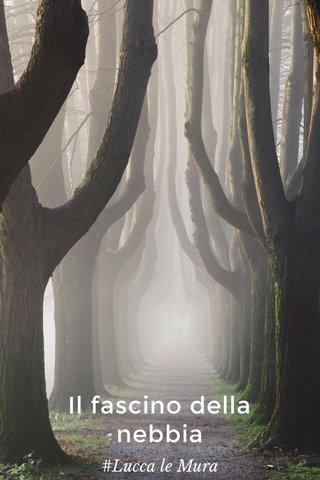 Il fascino della nebbia #Lucca le Mura