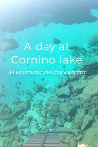 A day at Cornino lake An underwater shooting encounter