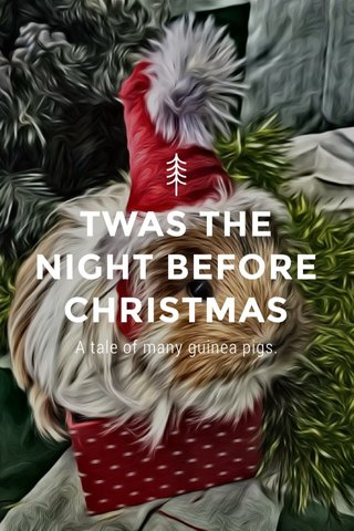 TWAS THE NIGHT BEFORE CHRISTMAS A tale of many guinea pigs.