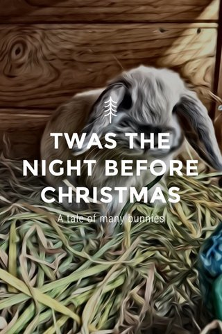 TWAS THE NIGHT BEFORE CHRISTMAS A tale of many bunnies