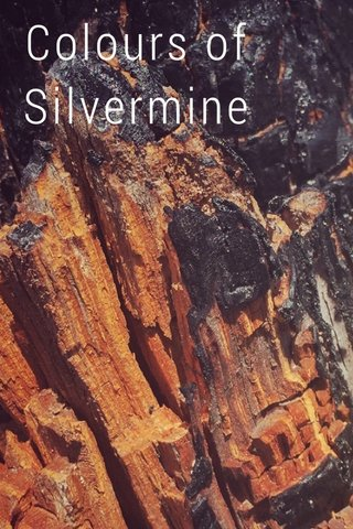 Colours of Silvermine