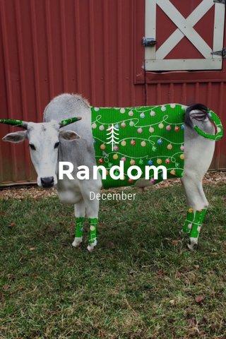 Random December