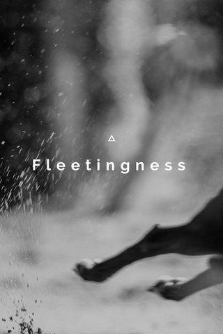 Fleetingness