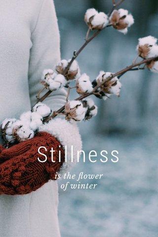 Stillness is the flower of winter