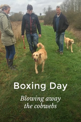 Boxing Day Blowing away the cobwebs
