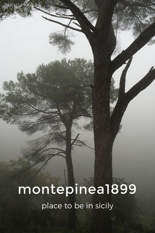 montepinea1899 place to be in sicily