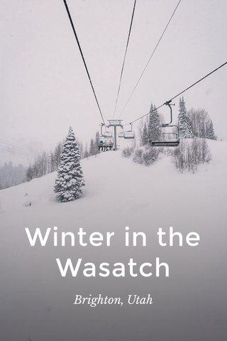 Winter in the Wasatch Brighton, Utah