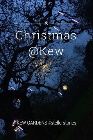 Christmas @Kew KEW GARDENS #stellerstories