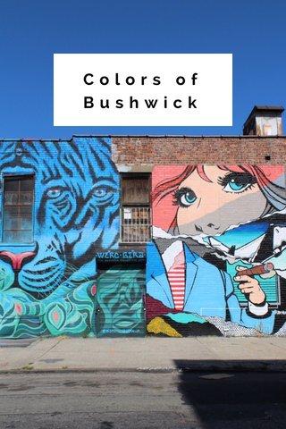 Colors of Bushwick