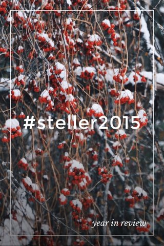 #steller2015 year in review