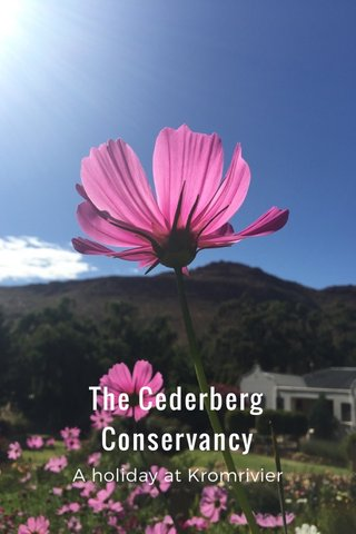 The Cederberg Conservancy A holiday at Kromrivier