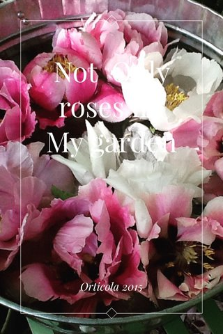 Not Only roses iin My garden Orticola 2015
