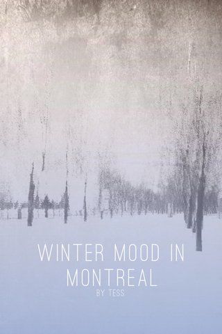 Winter mood in Montreal By Tess