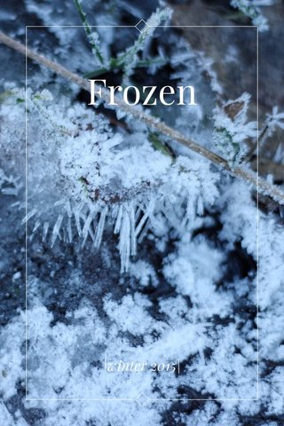 Frozen |winter 2015|