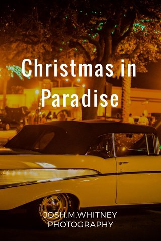 Christmas in Paradise JOSH.M.WHITNEY PHOTOGRAPHY