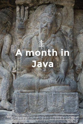A month in Java