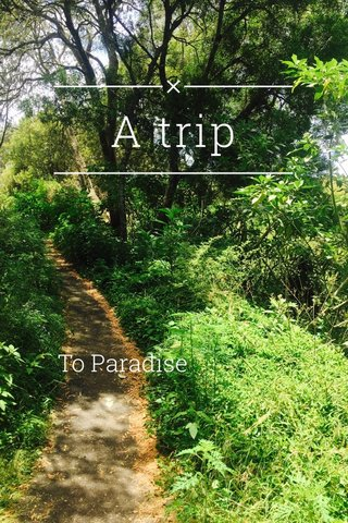 A trip To Paradise