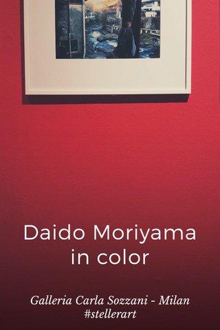 Daido Moriyama in color Galleria Carla Sozzani - Milan #stellerart
