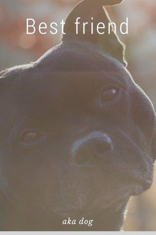 Best friend aka dog