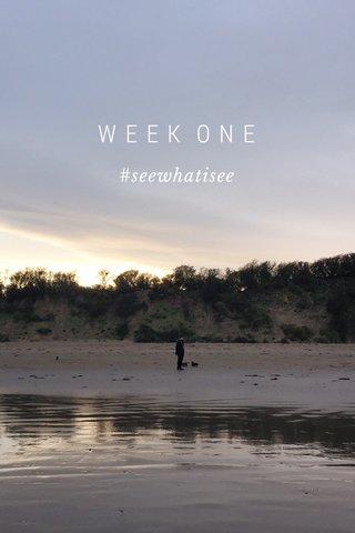 WEEK ONE #seewhatisee