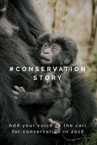 #CONSERVATIONSTORY Add your voice to the call for conservation in 2016
