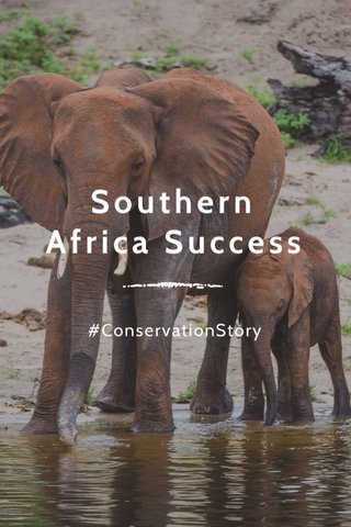 Southern Africa Success