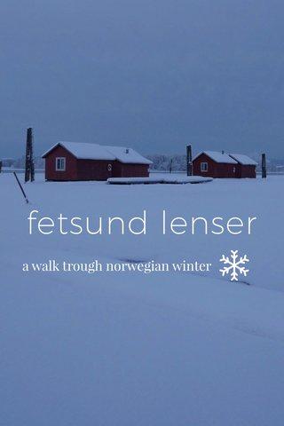 fetsund lenser a walk trough norwegian winter
