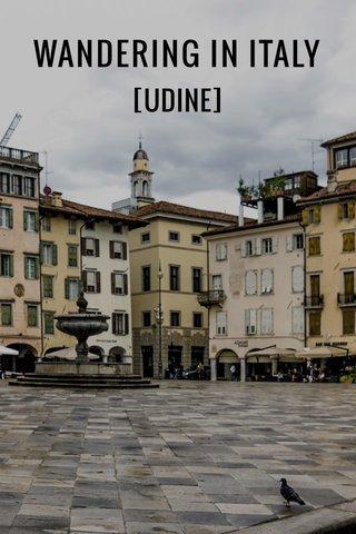 WANDERING IN ITALY [UDINE]