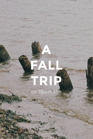 A FALL TRIP on 35mm film